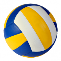 volleyball_mini