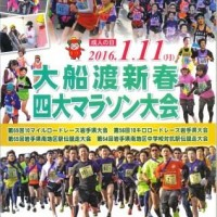 2016 pamphlet